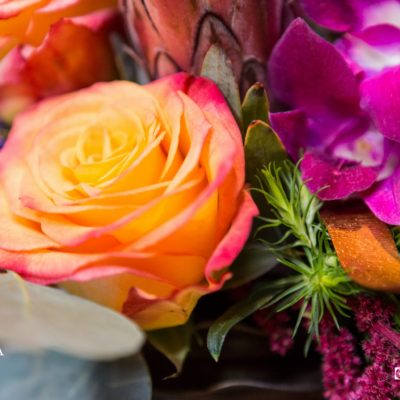 BTF Favorites; flowers for any occasion